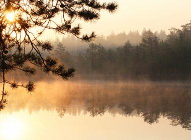 Карелия попала в топ-3 популярных направлений для природного туризма